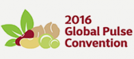 Global Pulse Convention