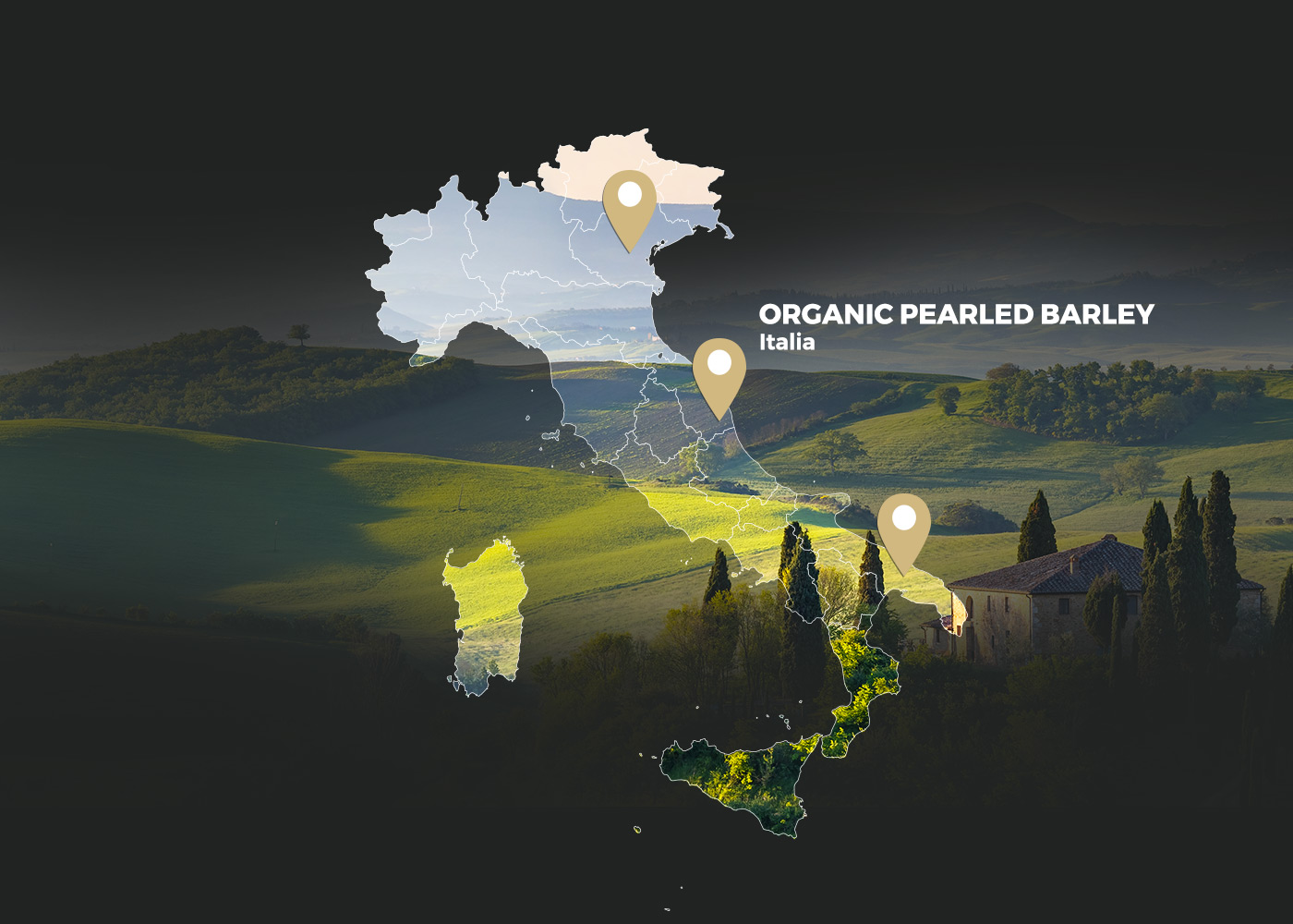 Organic Pearled Barley